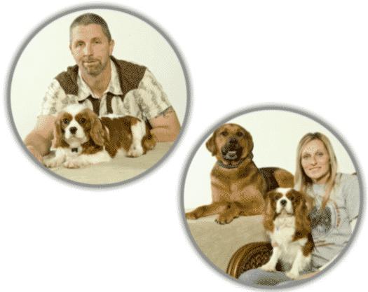 King Charles Spaniels breeders Cavalier Corral