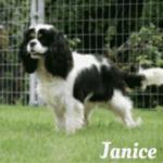 """""""Janice"""""""